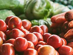 Photo of vegetables similar to the ones raised by Mitchell County farmers, including tomatoes, carrots, lettuce, and peppers